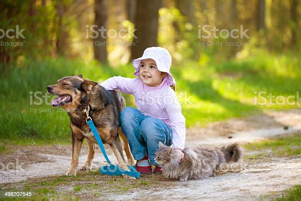 Little girl with big dog and cat in the forest picture id498207545?b=1&k=6&m=498207545&s=612x612&h=hqyw4j9fg7zfyna1hs6r6texhirtbhjalcb9mpvcsem=