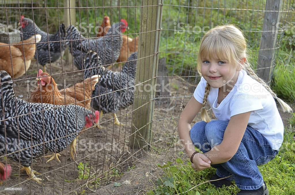 little girl with chicken stock photo