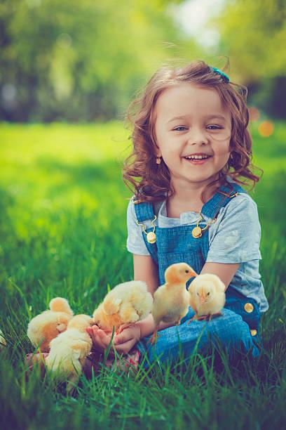 Menina com frango - foto de acervo