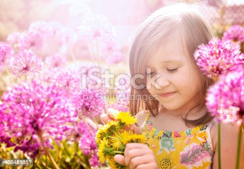 Little girl with dandelions, near Purple Flowers on a sunny day