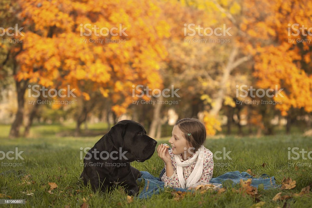 Little girl with dog in park royalty-free stock photo
