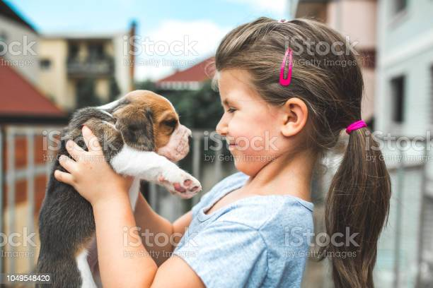 Little girl with her dog looking to each other picture id1049548420?b=1&k=6&m=1049548420&s=612x612&h=ru6wak zx1 jiae8n3kiow8nkxd7qolrok1siajadui=