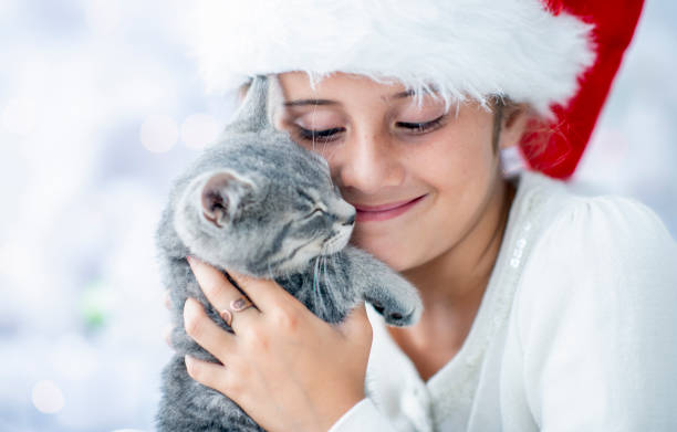 Little girl with kitten at christmas time picture id1070298068?b=1&k=6&m=1070298068&s=612x612&w=0&h=9hvozuwbwgnpxpmhozqkl5dv 3trr1jiathxjrkjyac=