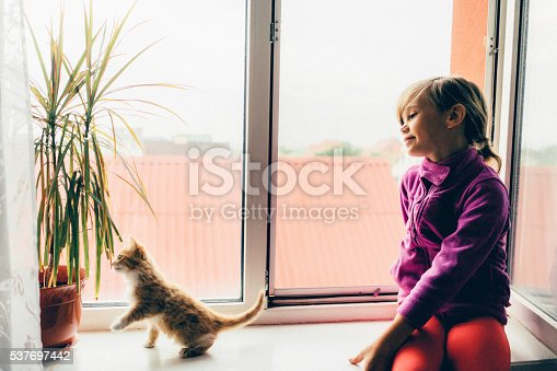istock Little girl with kittens 537697442