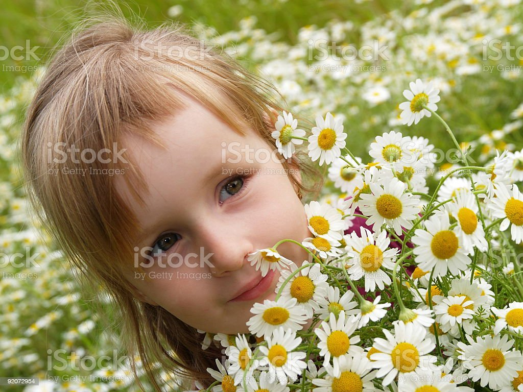 Little girl with marguerite royalty-free stock photo