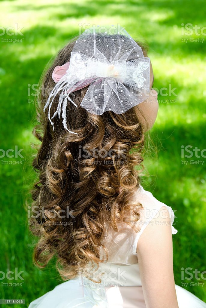 Little girl with perfect hairstyle in princess dress stock photo