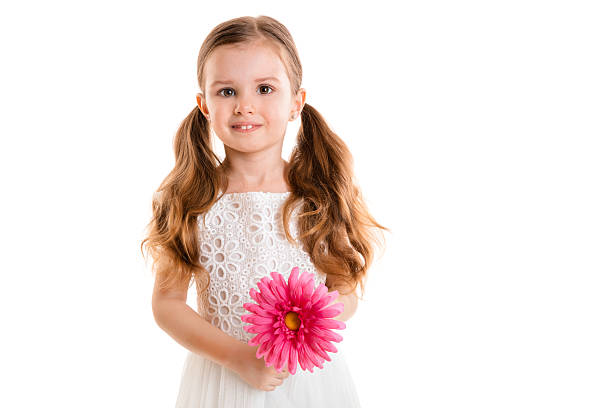 little girl with pink flower (isolated on white background, isolated) - pigtails stock photos and pictures