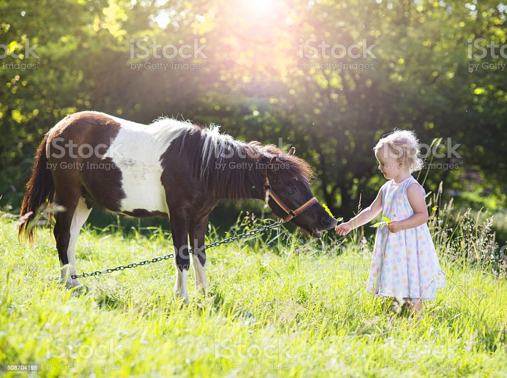 Little girl with pony in nature stock photo