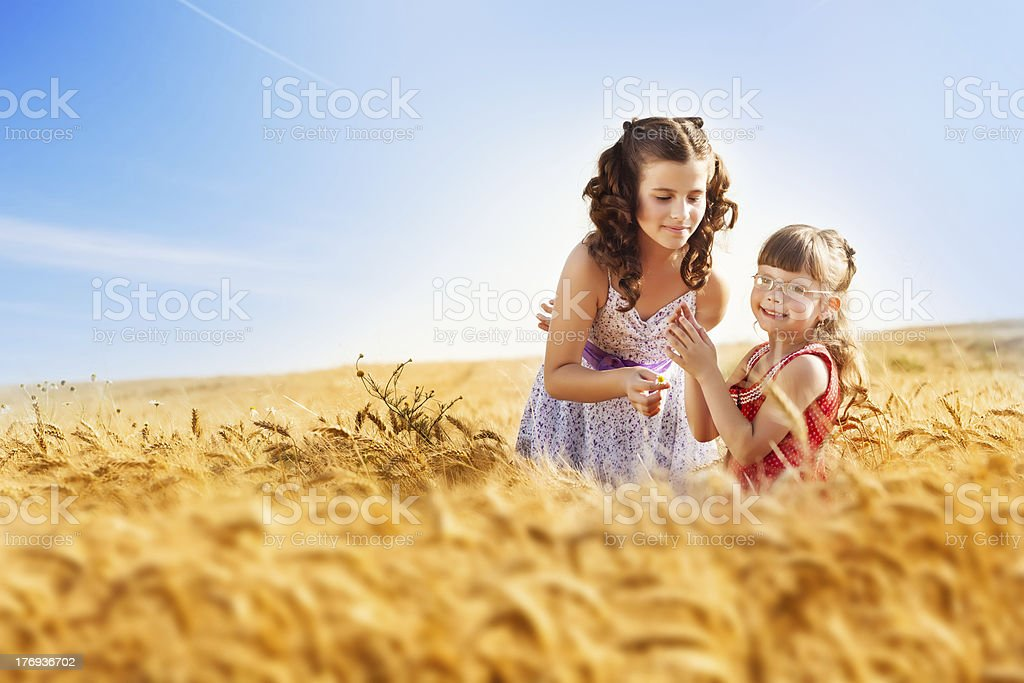 Little girls in a wheat field royalty-free stock photo