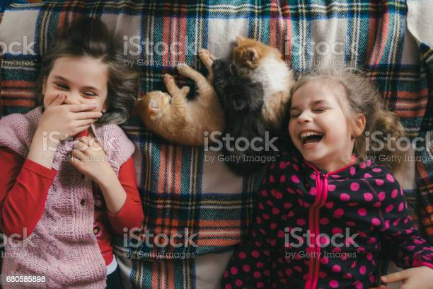 Little girls playing with kitten on the bed picture id680585898?b=1&k=6&m=680585898&s=612x612&h=7p7owy enjw5koxc 4vxmrfhzeoqxlfwxb8mgkpq 1m=