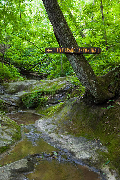 Little Grand Canyon Trail in Southern Illinois stock photo