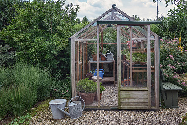 little greenhouse in the garden. - glass house stockfoto's en -beelden