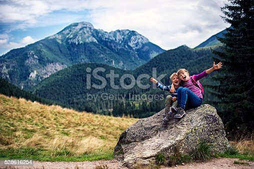 istock Little hikers resting on big stone and posing. 528616254