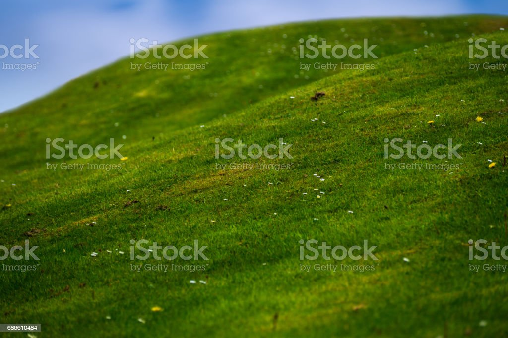 little hills with green gras royalty-free stock photo