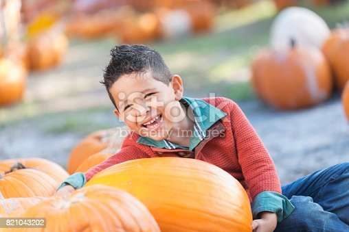 A happy little Hispanic boy sitting with lots of pumpkins, smiling at the camera. He is 5 years old, having fun at a fall festival.