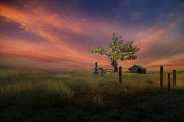 Little house on the prairie stock photo