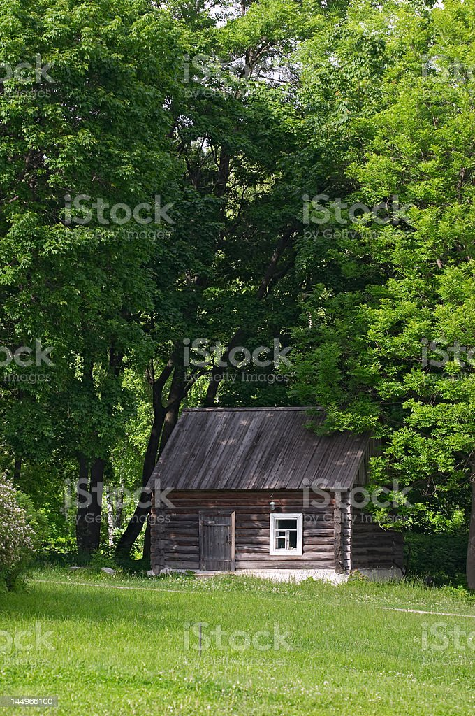 Little house with trees arow stock photo