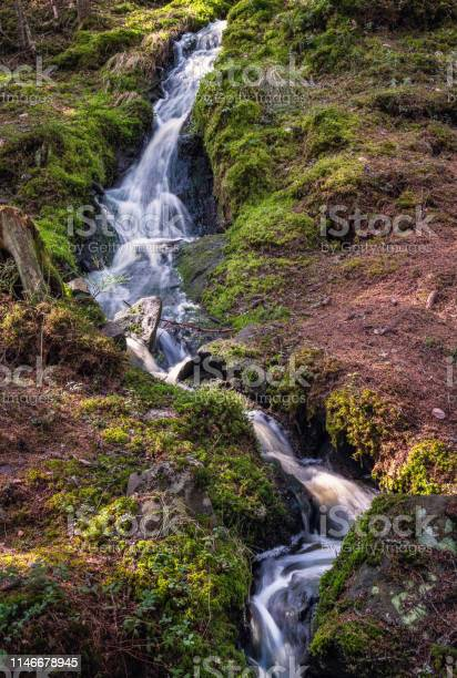 Photo of Little idyllic forest stream flowing in long exposure shot with green moos at sunny spring day in Finland