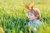 little kid boy having fun with traditional Easter egg hunt
