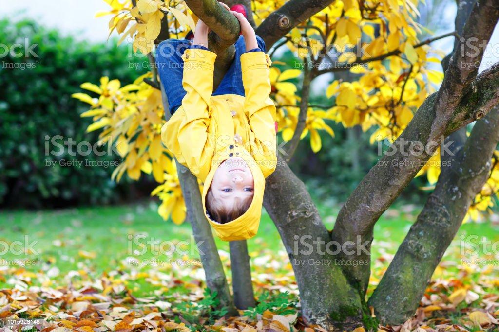 wenig kid Boy in bunten Kleidern genießen Klettern am Baum auf – Foto