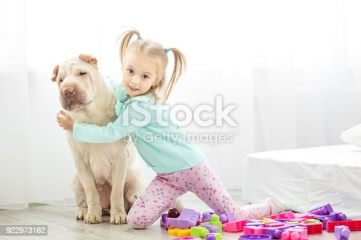 istock A little kid hugs a dog in the room. The concept of lifestyle, c 922973162