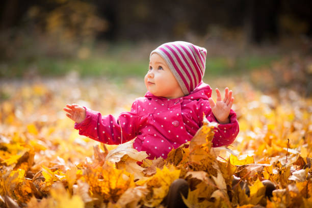 Little kid is playing and sitting in fallen leaves in autumn par stock photo