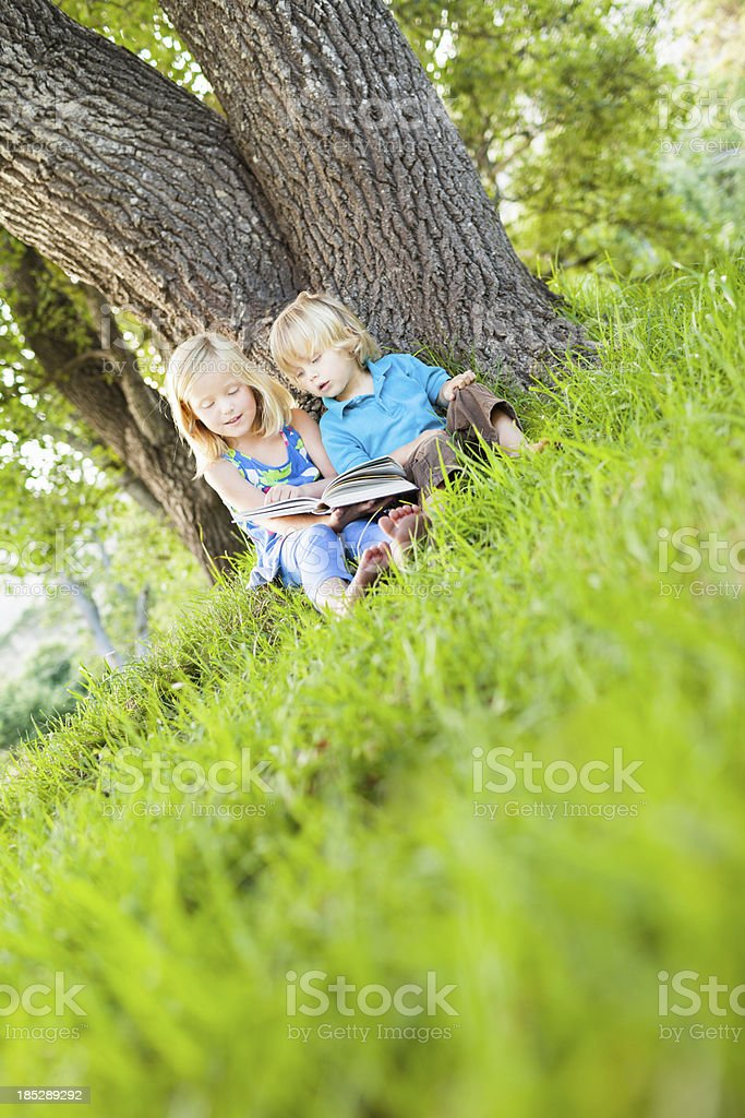 Little kids reading under a tree royalty-free stock photo