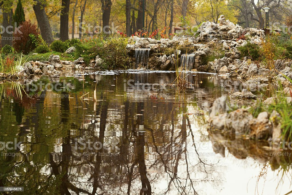 Little lake in park royalty-free stock photo