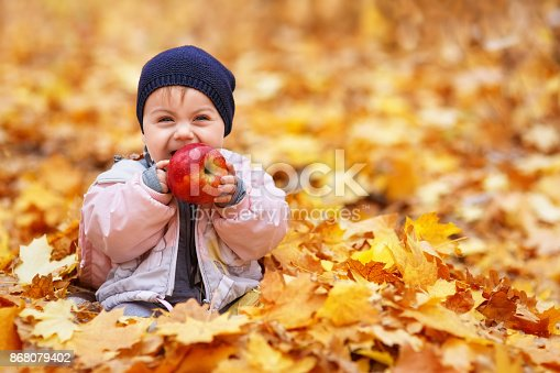 istock little laughing girl in the autumn park 868079402