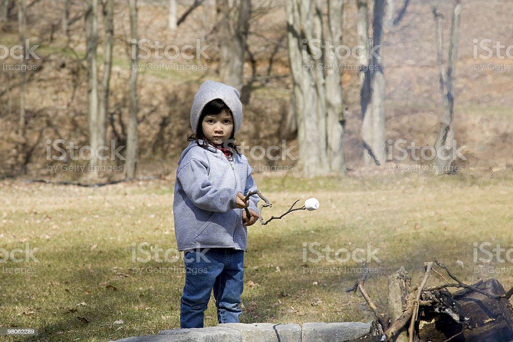 Little Marshmallow Roaster royalty-free stock photo