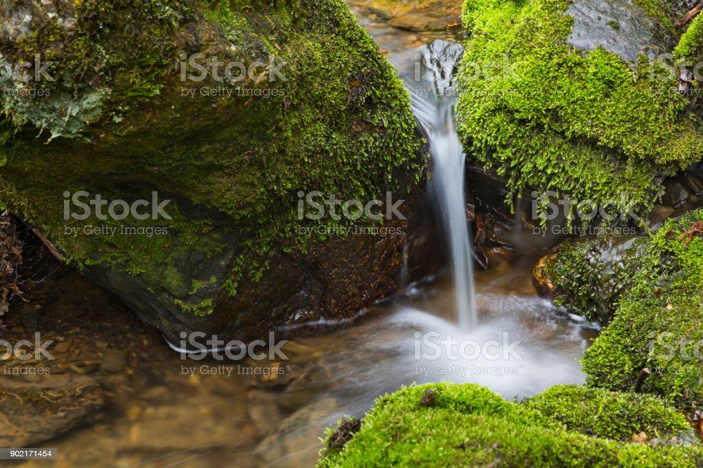 Petite cascade Mountain Creek - Photo