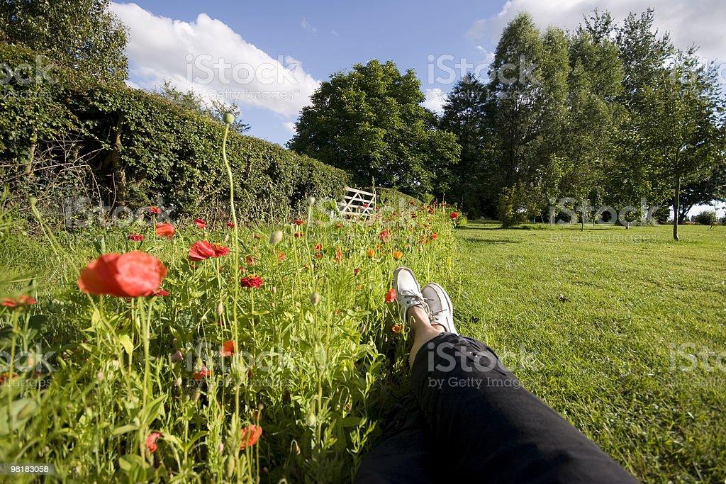 리틀 nap royalty-free 스톡 사진