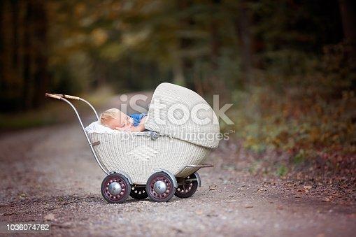 Little newborn baby boy, sleeping in old retro stroller in forest, autumn time. Posed baby in retro pram, baby sleeping, vintage stroller