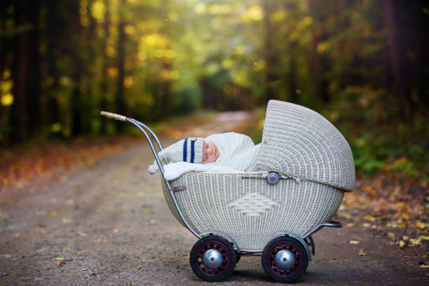 Little newborn baby boy, sleeping in old retro stroller in forest stock photo