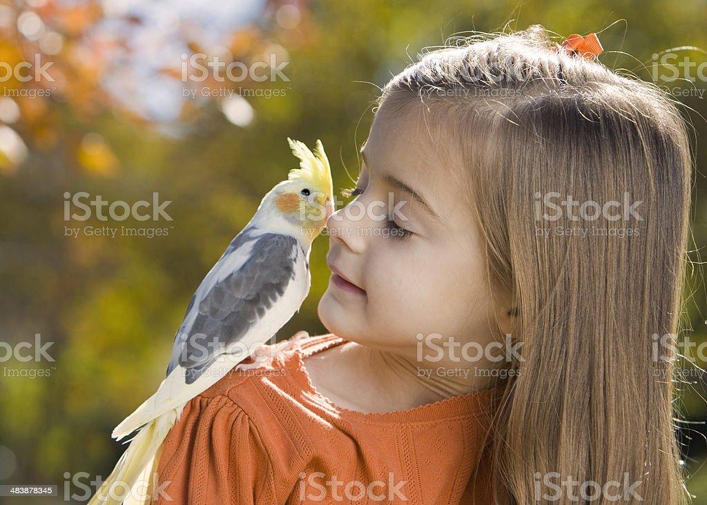 Little Peck on the Cheek stock photo