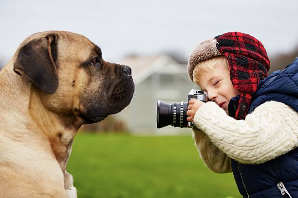 Little Photographe - Photo