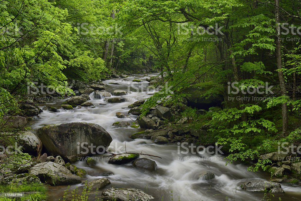 Little Pigeon River in Tremont of Great Smoky Mountains royalty-free stock photo