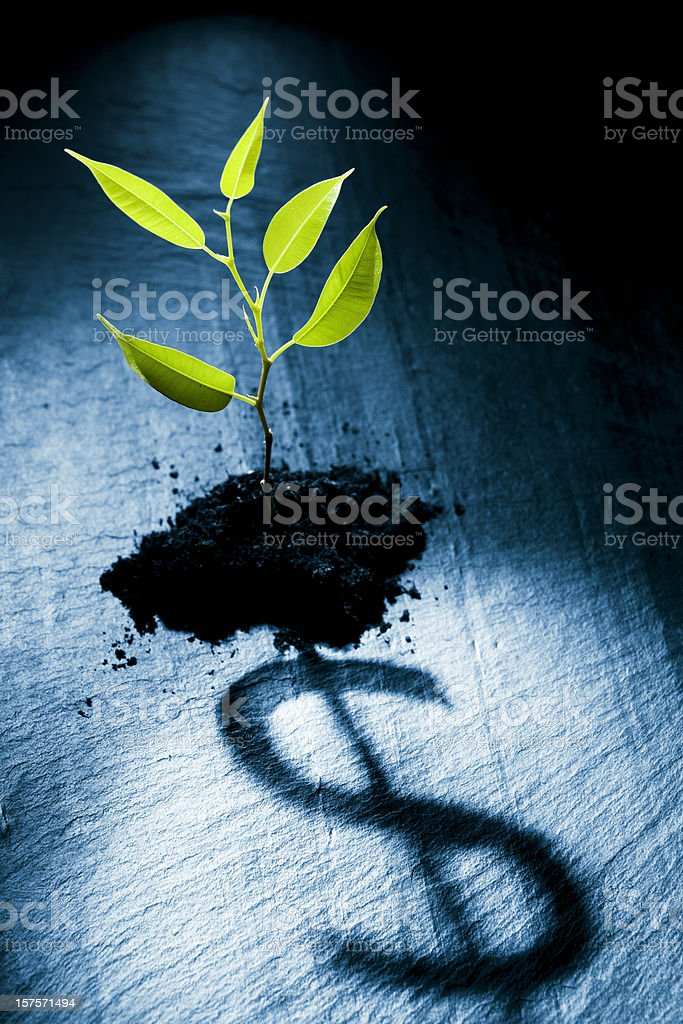 Little plant projecting dollar symbol royalty-free stock photo