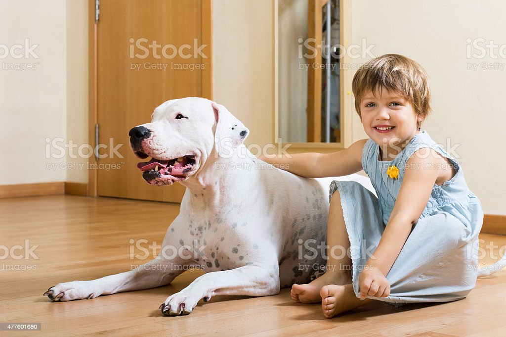 little pretty girl on the floor with dog stock photo