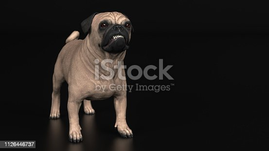 Little pug puppy looking unhappy and angry, standing black background 3d illustration