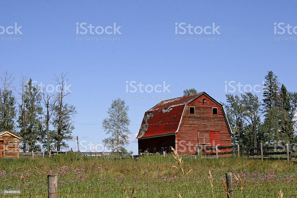 Little Red Barn royalty-free stock photo