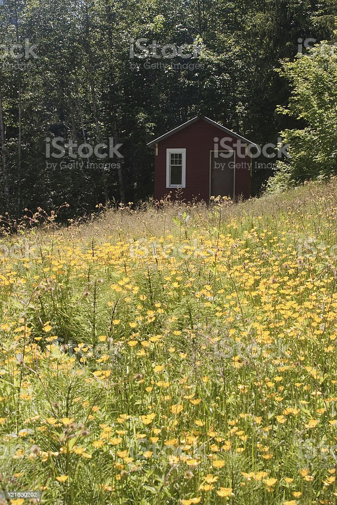 little Red Cabin stock photo