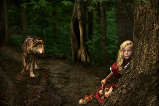 Little Red Riding Hood and wolf in forest