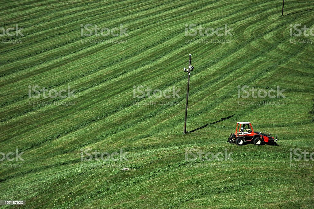 Little Red tractor in a giant green grass field royalty-free stock photo
