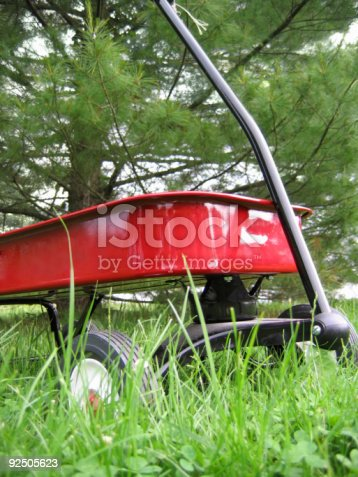 red wagon in an overgrown field