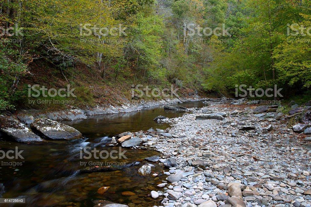 Little River 10131602 stock photo