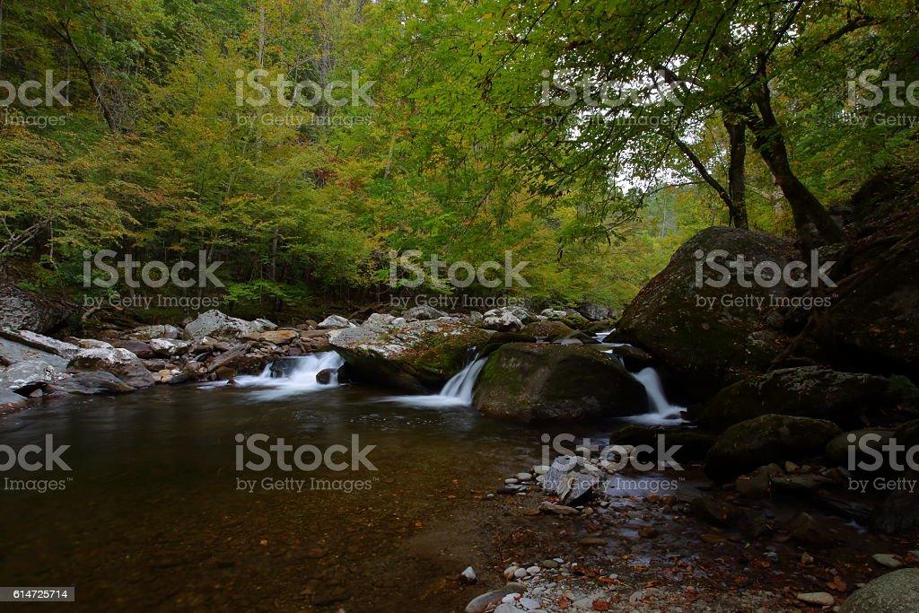 Little River 10131607 stock photo
