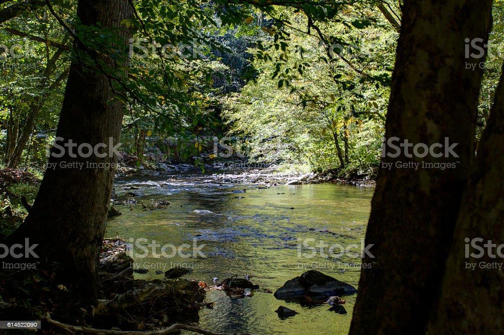Little River 101602 stock photo
