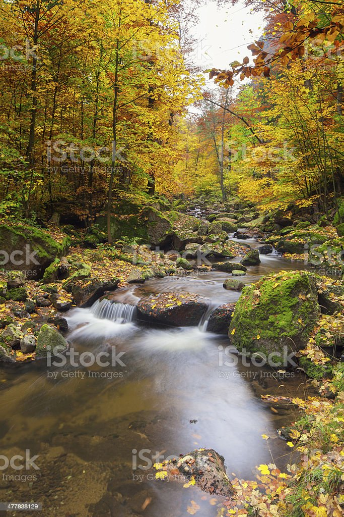 Little River in  National Park royalty-free stock photo