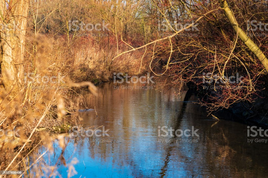 Flüsschen in der Morgensonne – Foto